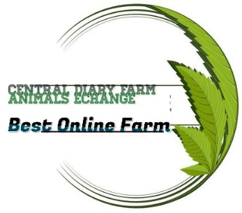 Central Dairy Farm Animal's Exchange